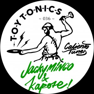 toytonics_munkykapote-300x300