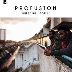 profusion-where-do-i-begin